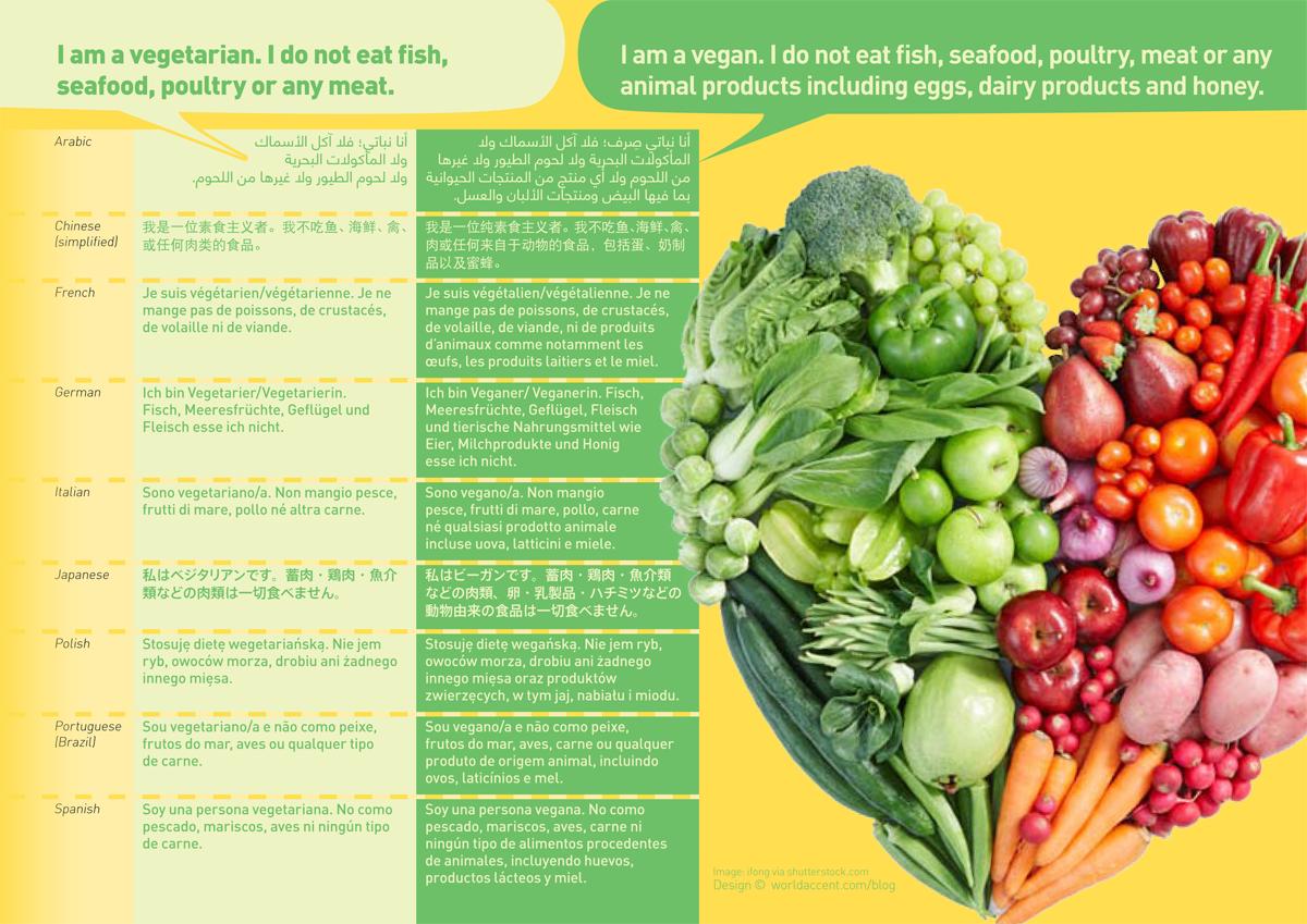Veganvegetarian Translation Free Multilingual Phrase Card