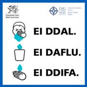 Catch It Bin It Kill It – Welsh translation