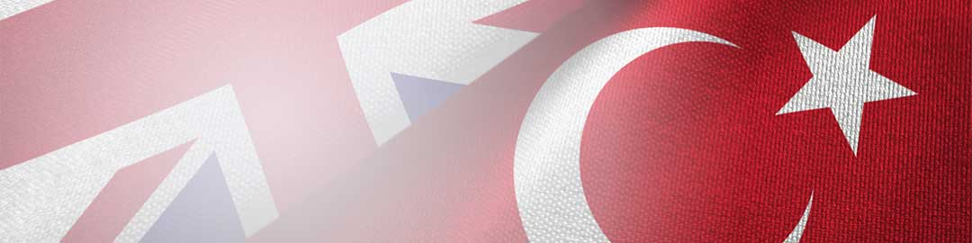 Sample of English to Turkish translation by WorldAccent, London